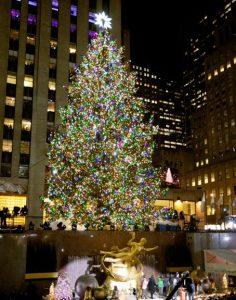 ニューヨーク州マンハッタンの巨大なクリスマスツリー