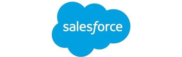 Salesforce によるバックアップ